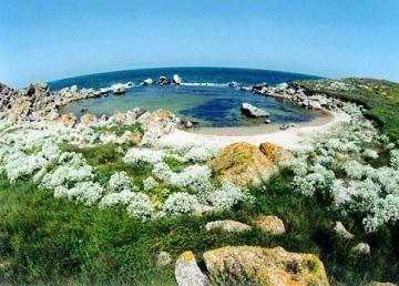 Ланшафт моря