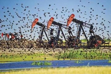 Мировые запасы нефти