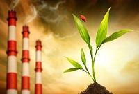 Основные глобальные экологические проблемы