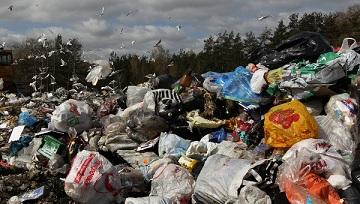 Утилизация отходов важнейшая проблема современности Из года в год растёт число промышленных предприятий соответственно возрастает количество отходов что приводит к загрязнению и захламлению природы