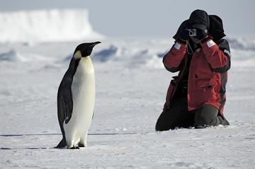 Туристы Антарктиды