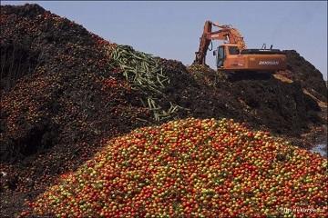 Утилизация сельскохозяйственных отходов