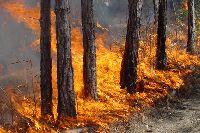 профилактика пожаров в повседневной жизни