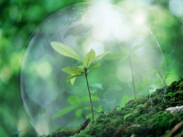 Экологическая защита