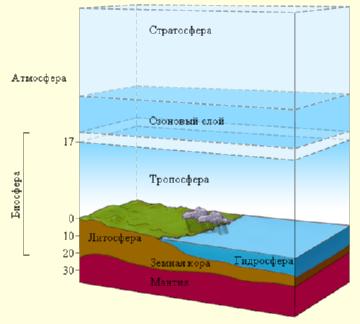 Строение биосферы