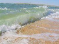 экологические проблемы азовского моря