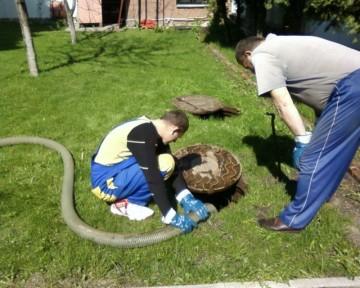 Как очистить выгребную яму без откачки