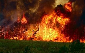 Профилактика пожаров в быту и на производстве