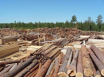 Отходы лесопиления