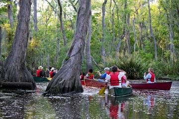 Туристы на болоте