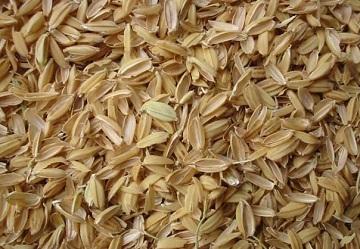 Переработка рисовой шелухи