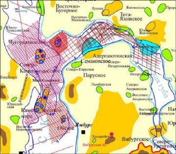 Карта Ямбургского месторождения