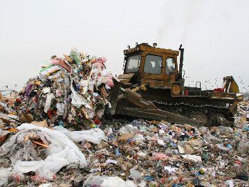 Несанкционированный вывоз отходов
