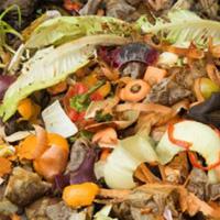 уничтожение биологических отходов
