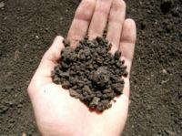 причины загрязнения почвы