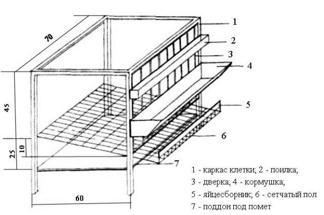 клетка для кур чертеж с размерами