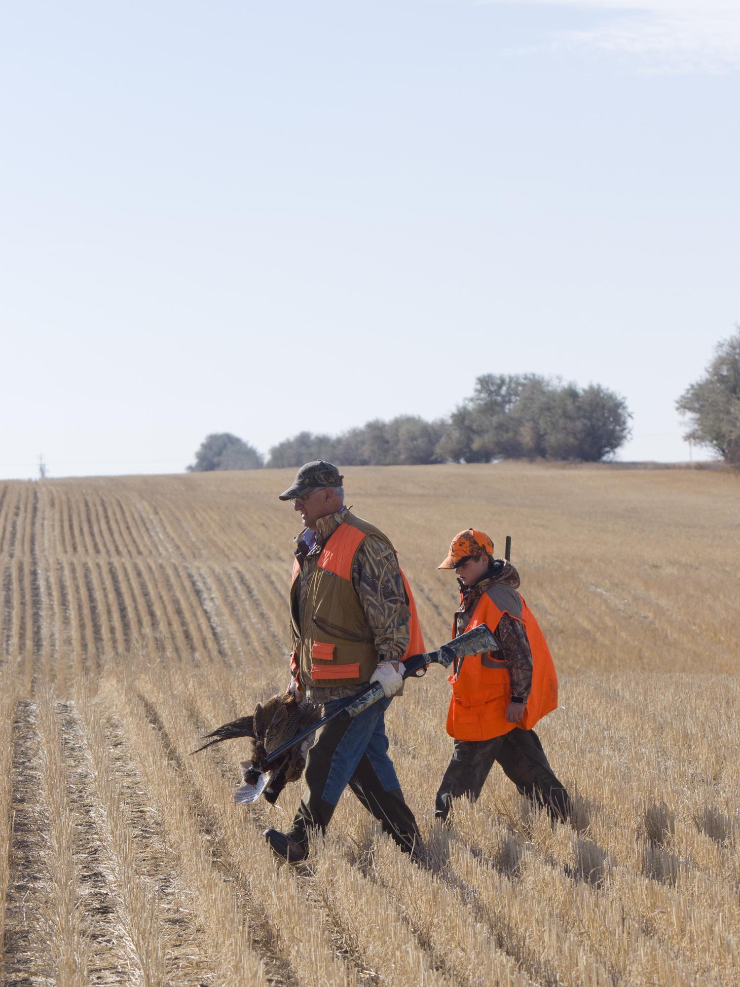 ферма по разведению фазанов